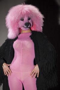 FLO- Madame Pink foto cesare accetta